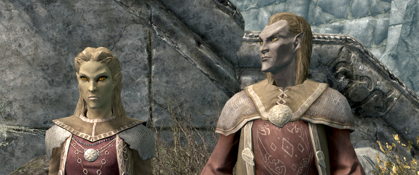 Altmer in Skyrim often make racist remarks.